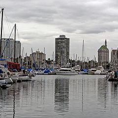"""фото """"The Marina"""""""
