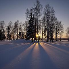 """фото """"Зимний вечер / 0206_0082"""""""