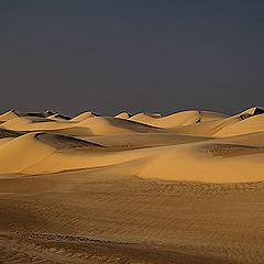 """фото """"Dunes 07"""""""