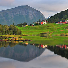 "фото ""Norwegian dream"""