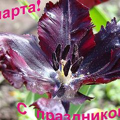 """фото """"С праздником"""""""