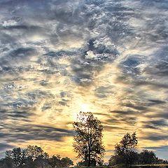 """фото """"Осеннее утро..."""""""