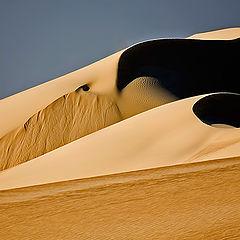 """фото """"Dunes 08"""""""