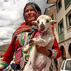 """фото """"девушка с альпакой. Обе молоды."""""""