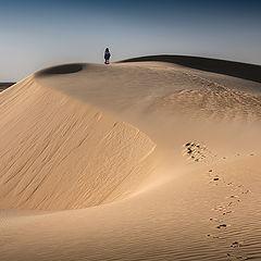 """фото """"Follow the traces"""""""