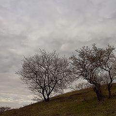 """фото """"Давящее небо..."""""""