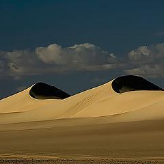 """фото """"Dunes 10"""""""