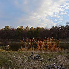 """фото """"Утро,лес, озеро, велосипеды..."""""""