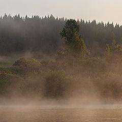 """фото """"Панорамка (фрагмент) / 0199_0228-0231"""""""