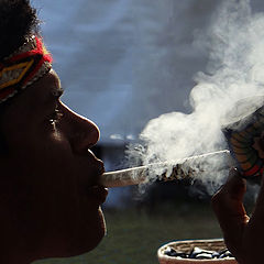 "фото ""Indian Pataxó"""