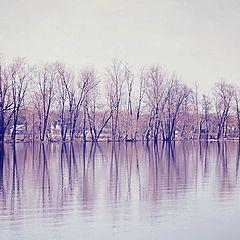 """фото """"Ottawa river"""""""