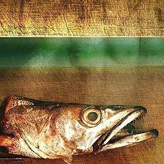 """фото """"A FISH"""""""