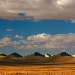 "фото ""Melody of Dunes"""