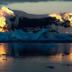 """фото """"Где-то в Антарктике..."""""""