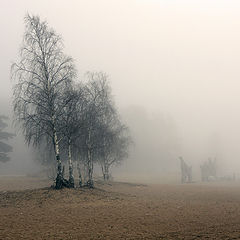 """photo """"finniish seaside, fog"""""""
