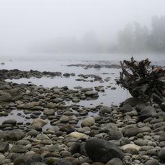"""фото """"Туман над плёсом"""""""