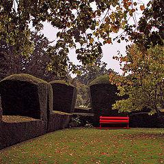 "фото ""Красная скамейка"""