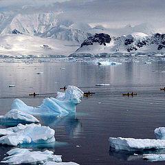 """фото """"Экскурсанты в Антарктике..."""""""