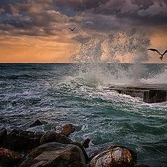 "photo ""The storm"""