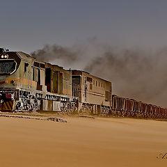 """фото """"The Train"""""""
