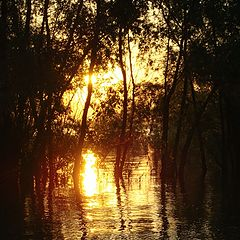 """photo """"Orange sunset"""""""