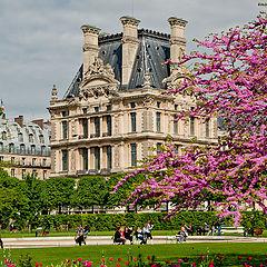 """фото """"Весна в Париже."""""""