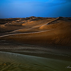 """фото """"Sand dunes at early morning"""""""