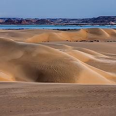 "фото ""Rare Desert Scene."""