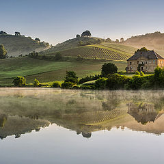 "фото ""Morning reflection"""