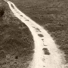 """фото """"Път за никъде"""""""