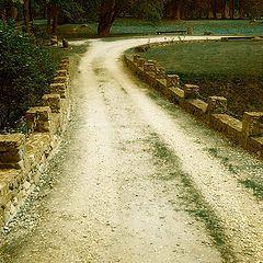 "photo ""Yellow road"""