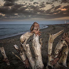 "photo ""tales of the sea and shipwrecks"""