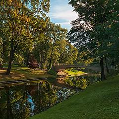"фото ""Утром в парке..."""