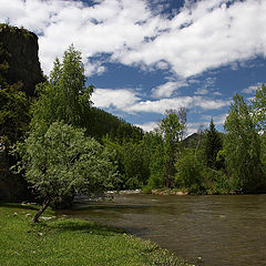 """фото """"На берегу реки"""""""