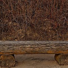 """photo """"Lonely bench"""""""