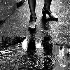 """фото """"После дождя"""""""