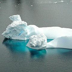 "фото ""Из серии ""Антарктика"""""