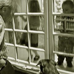 """фото """"Трое в кадре, и собака"""""""