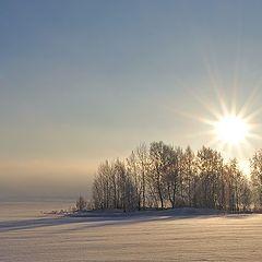 "фото ""Снежное безмолвие"""