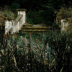 """фото """"Stairway to Nowhere"""""""