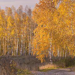 "фотоальбом ""Осенний"""