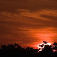 """фото """"Sunset 2"""""""