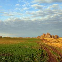 """фото """"Осенними полями..."""""""
