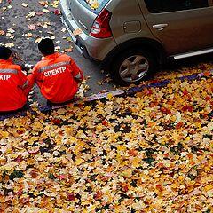 """фото """"Повелители осенних листьев"""""""