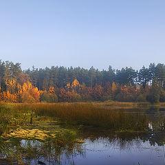 """photo """"Autumn whiff..."""""""