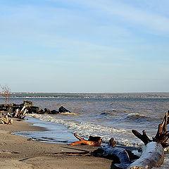 """фото """"Осень...""""дикий"""" пляж..."""""""