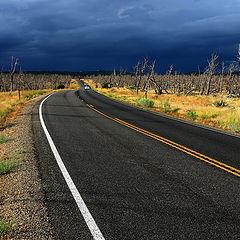 "фото ""Mesa Verde"""