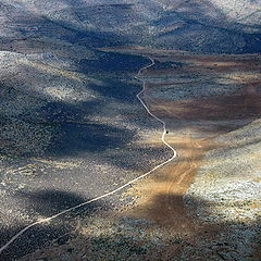 "фото ""Mojave Desert"""