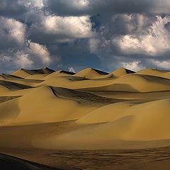 """фото """"Dunes 23"""""""