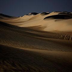 """фото """"Dunes 24"""""""